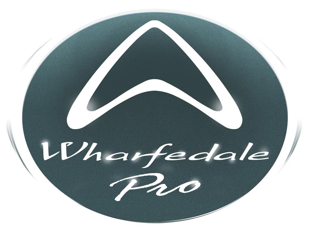 WP logo-big
